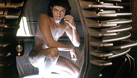 goldblum the fly